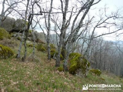 Silla de Felipe II y la Machota;senderos bizkaia;senderos cazorla